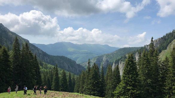 Romania, summer 2018.